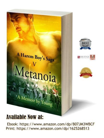 Metanoia 3D-Book-Template-1000 pix